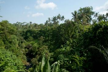 bali-2009-17