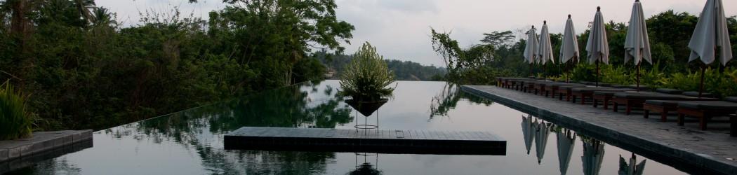 Alila Ubud - The Infinity Pool